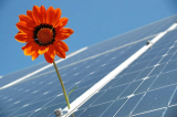 The Sun Exchange Review: Passive Income from Solar Energy for 20 yrs